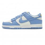 Nike SB Dunk Low Coast Blue DD1503-100