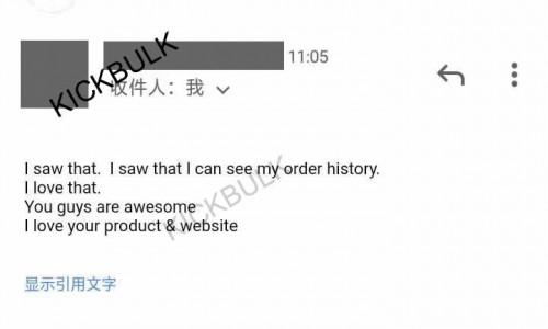 Customer Reviews of KickBulk Sneaker